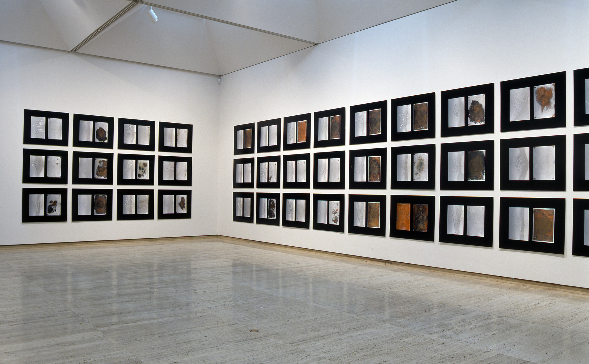 Debra Phillips, 52 sidelong glances (installation view Art Gallery of New South Wales), 2001