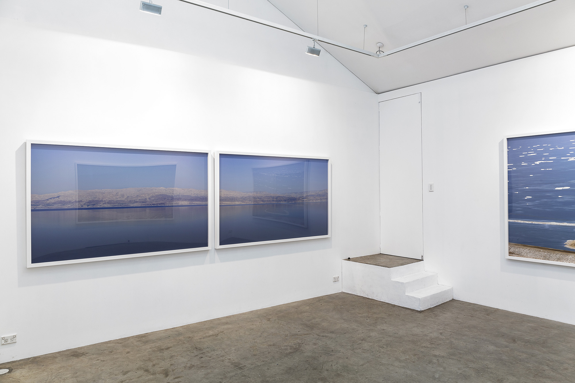 Lynne Roberts-Goodwin: 1 [gallery view].closeupatadistance 2016 series KW Gallery View
