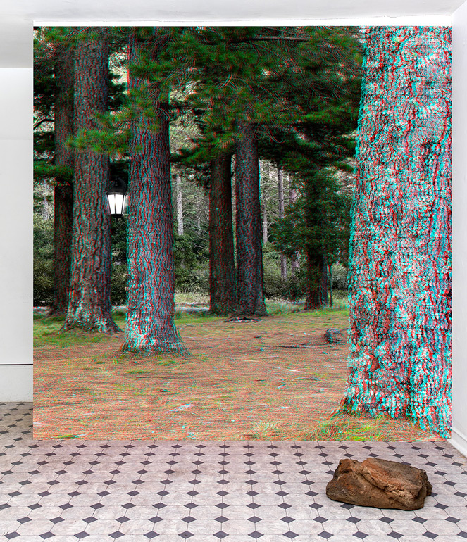 Geoff Kleem, Good Forest