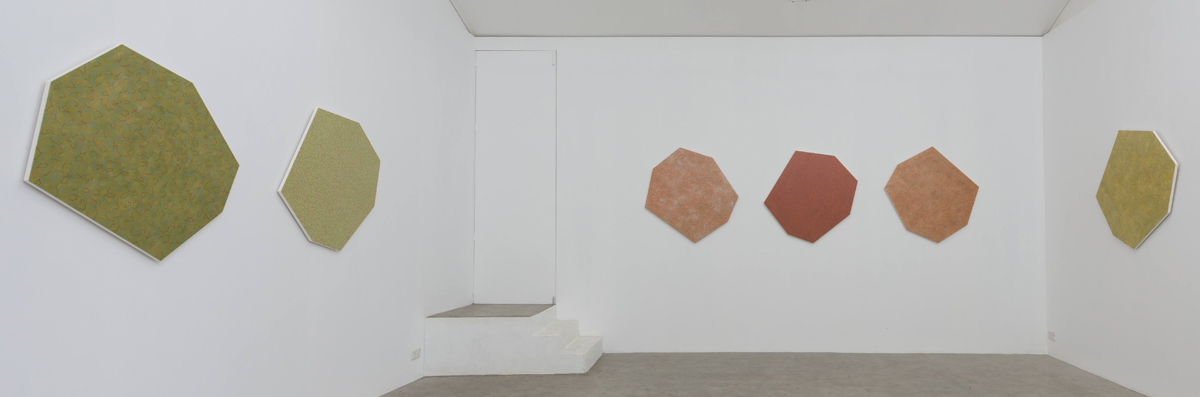 Helga Groves, Optical Terrane, Installation view